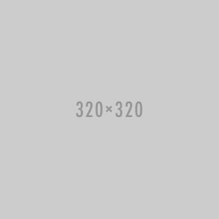 320x320