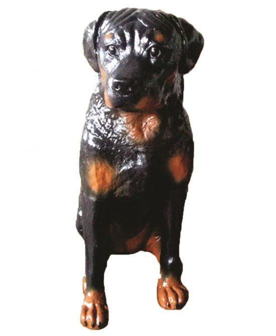 Cachorro Rottweiler Femea